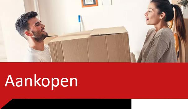 Klarenbeek vastgoed - huis kopen bij NVM makelaar Bemmel
