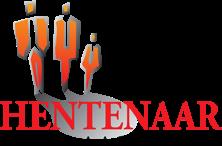 Logo Hentenaar Makelaardij o.z. Zuidwolde