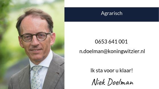 De Koning & Witzier Niek Doelman
